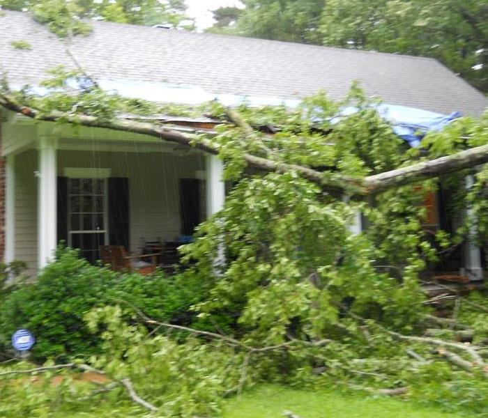 Storm Damage in Vicksburg,MS