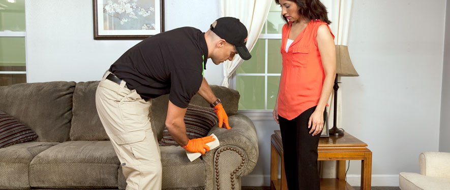 Vicksburg, MS carpet upholstery cleaning