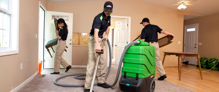 Vicksburg, MS cleaning services